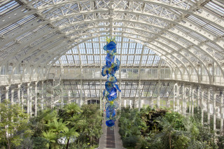Dale Chihuly, Temperate House Persians, 2018 and Yellow Herons and Reeds, 2007-13, © Royal Botanic Gardens, Kew, London, installed 2019
